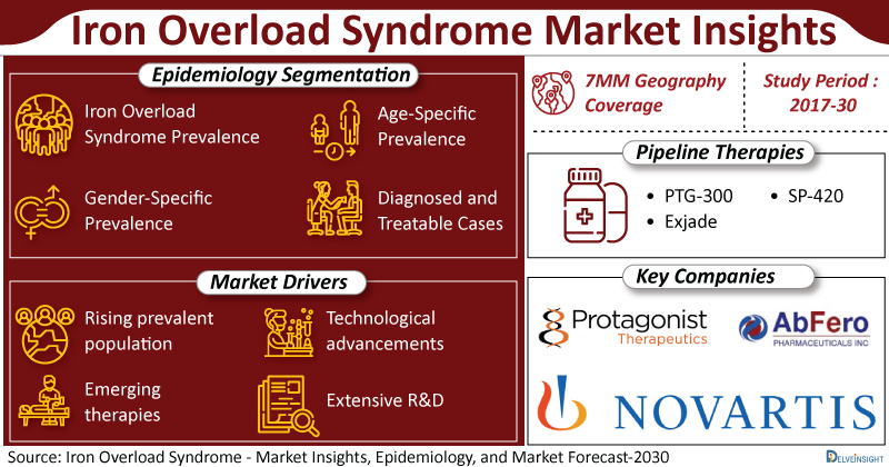 Iron Overload Syndrome Market Insights